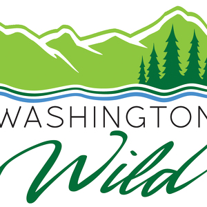 Team Page: Washington Wild
